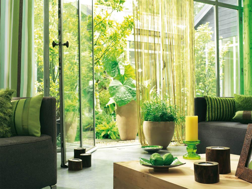 Elementos naturales dentro del hogar una buena opción