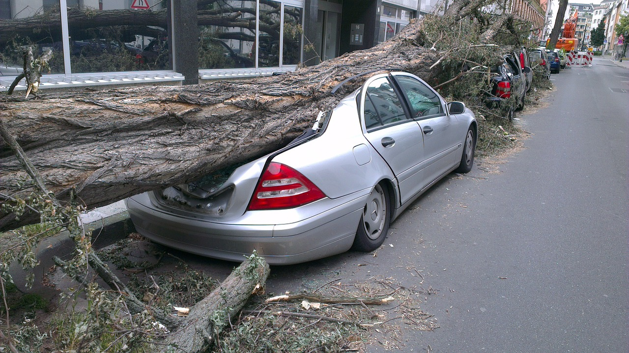 autos aplastados por un automóvil